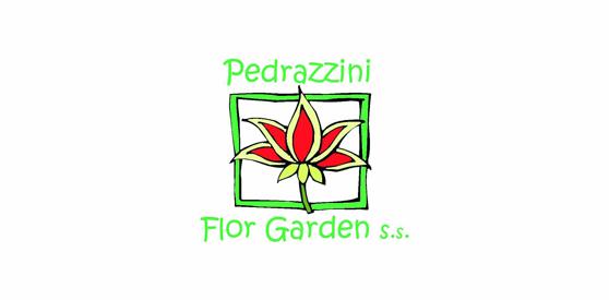 Pedrazzini01